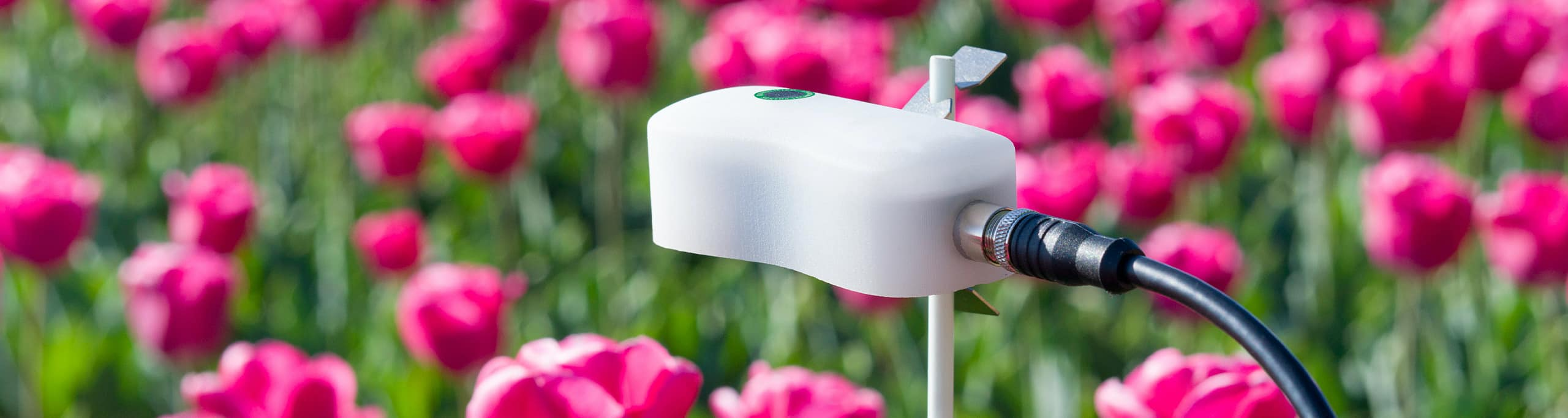 Hanno Groen & Joanna Boothman design Amsterdam Sensor for quantified